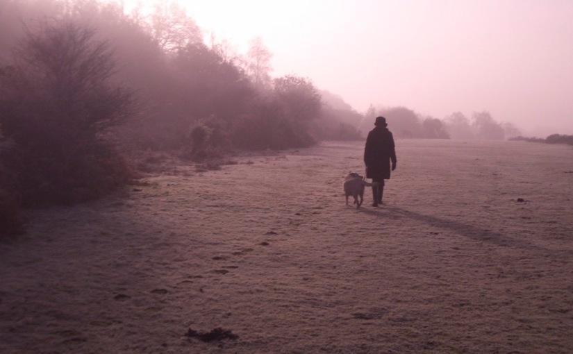 Mist Over theMoor