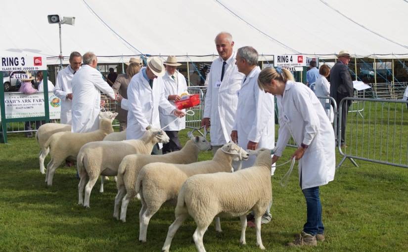 The County Show 2