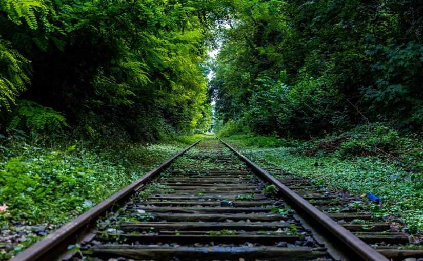 The Lymington Train