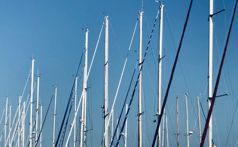 A Forest ofMasts